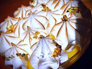 lemon meringue pie .jpg