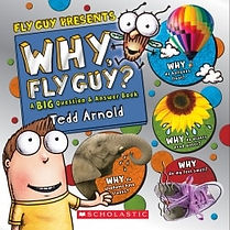 Scholastic Why Fly Guy Answers to Kids B