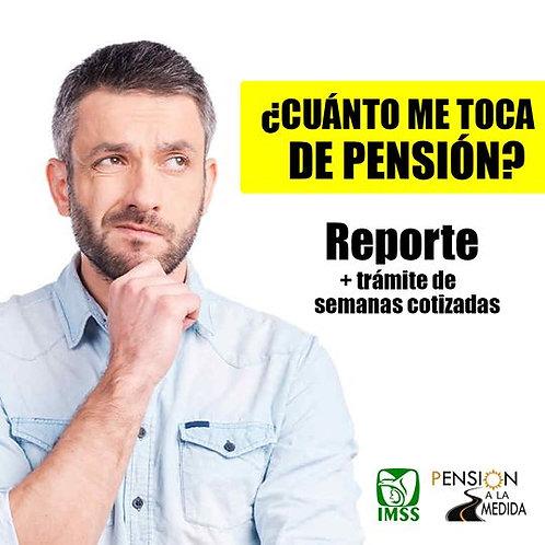 Reporte pensión mensual IMSS SIN modalidad 40 + semanas cotizadas