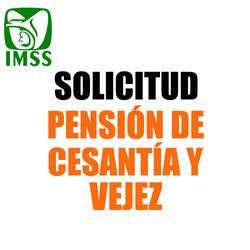 Solicitud pensión cesantía