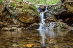 Ruisseau Ardennais