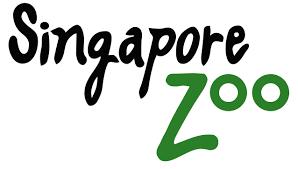 Beary Best Singapore Zoo