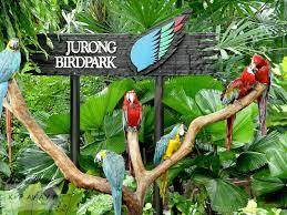 Beary best Jurong Birdpark