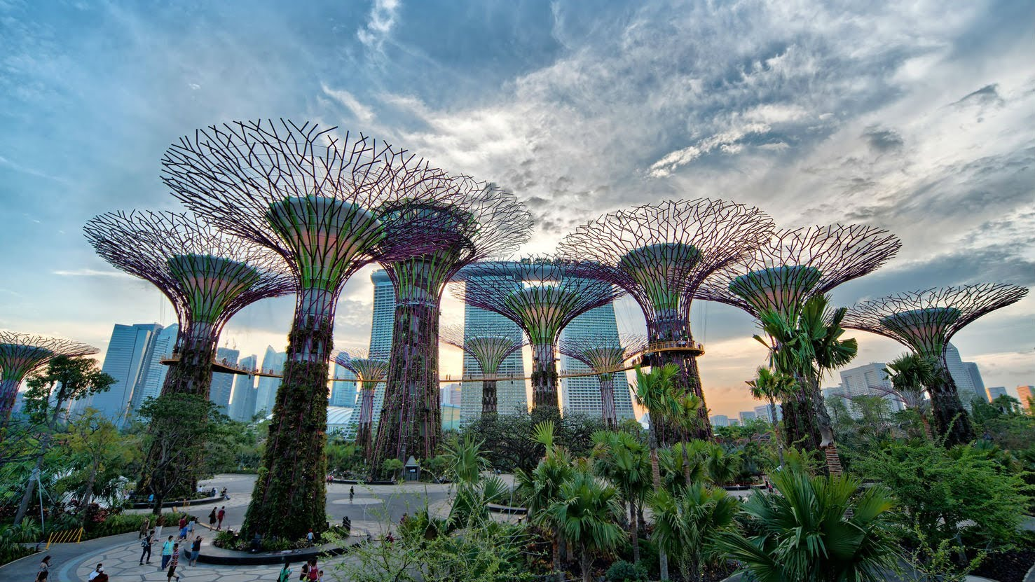 Beary Best Gardens by the Bay