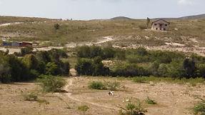 Abandoned church, near Cabaret, Haiti