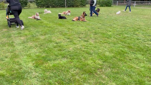 Alltags-Training in der Gruppe