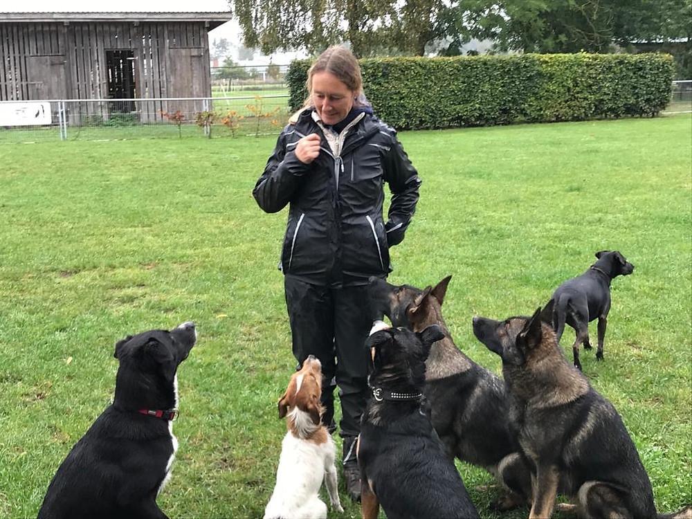 Veronika Hauff mit Hunden