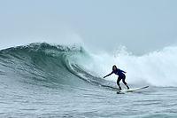 surf, surfing, wave