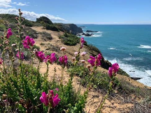 The Fishermen's Trail in Walking Distance to Casa da Vida II