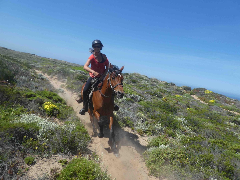 Horse riding along the trails, cliffs, and beaches right outside of Casa da Vida II.