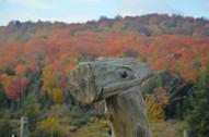 Alpagas Sutton - Wooden Alpaca