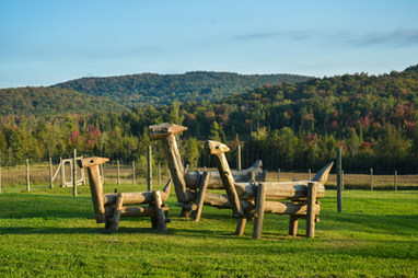 Alpaga en bois / Wooden alpaca