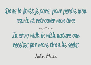 Citation / Quote John Muir