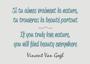 Citation / Quote Vincent Van Gogh