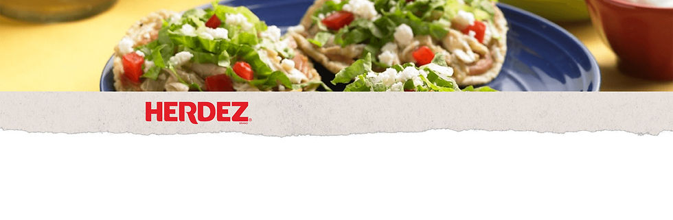 Herdez_Product_Category_Banner_Salsas (1