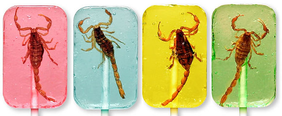Hotlix Real Scorpion Candy Suckers