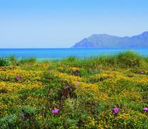 Senderos azules y rutas gastronómicas para descubrir las Islas Baleares