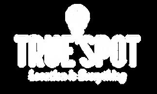 TrueSpot | Success case