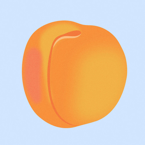 Apricot-grain.jpg