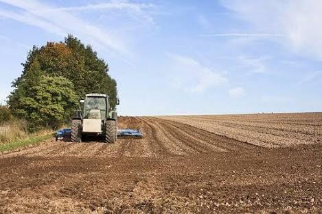 agriculture2_art.jpg