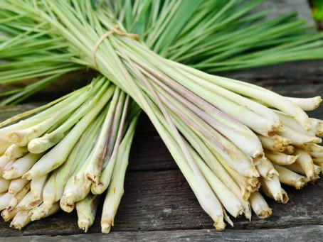 Cooking With Thai Lemongrass!