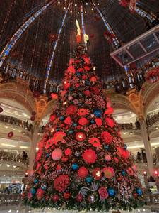 Christmas tree at Lafayette
