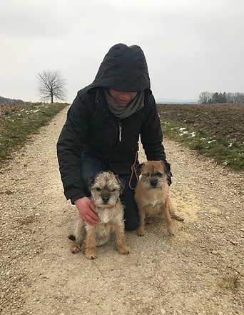 Border Terrier Treffen in Zürich Oberland