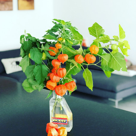 3 DIY decoration with the lovely Physalis