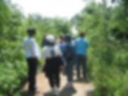 Teacher Trail Tour.jpg