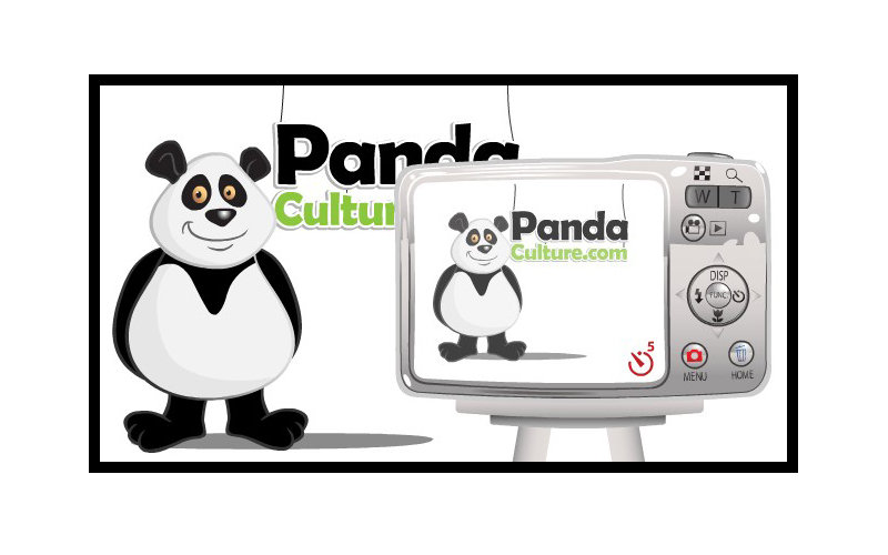cartoon Panda standing in front of camera for website