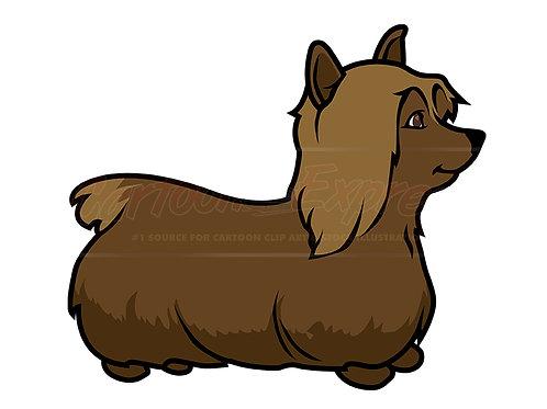 lap dog