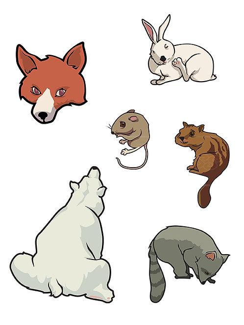zoo mammals
