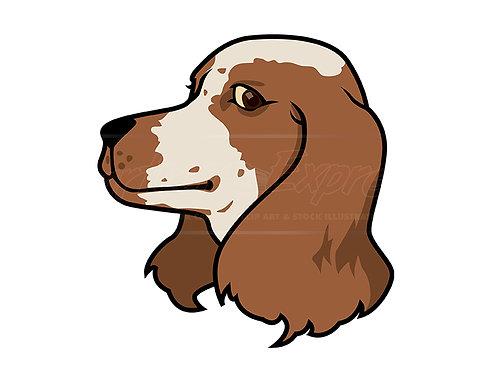 spaniel dog head