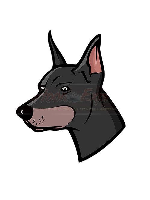 Doberman dog