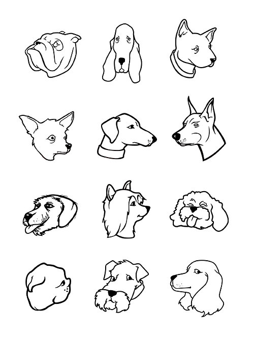 dog faces bw collection