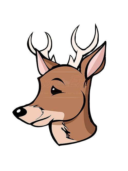 buck deer