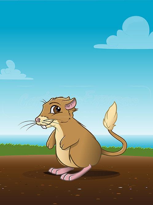 kangaroo rat background