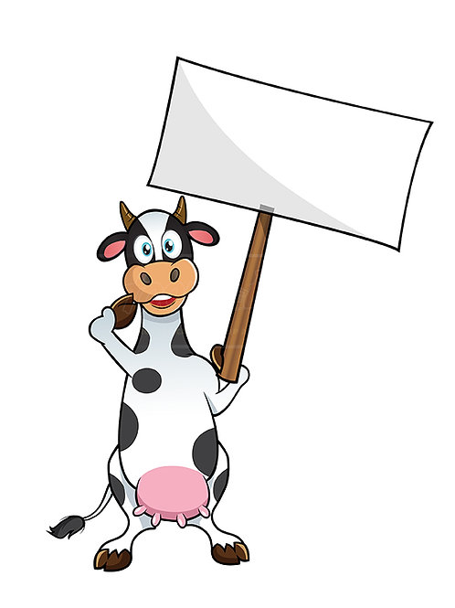 cow protesting
