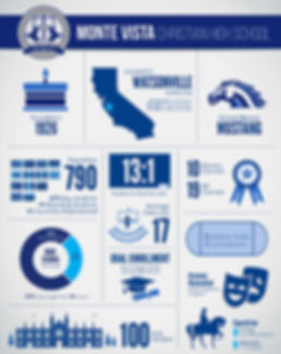 School-by-the-numbers infographics poster for private school