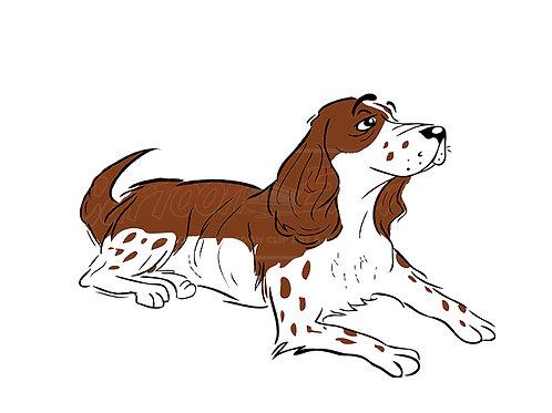Spaniel dog sitting