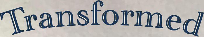 tranpot logo 2.jpg