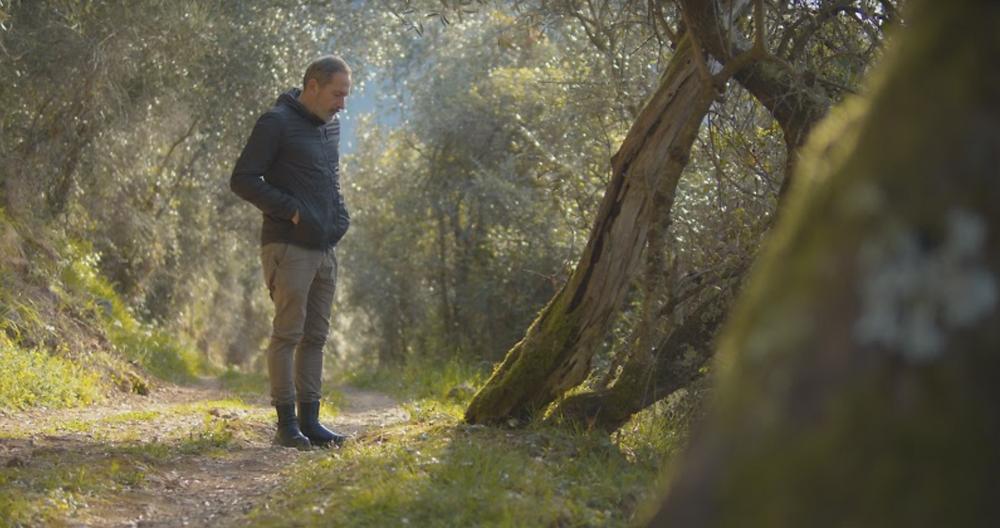 A man (designer Ugo Cacciatori) looks at a tree in a forest