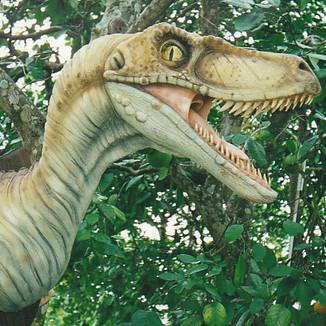 Raptor Mount