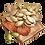 pumpkin_seeds.png
