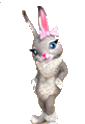 rabbit costume.png