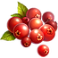 wineberry.png