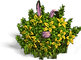 t_bush_with_rabbit.png