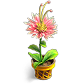 b_weather4_flower2.png