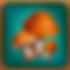 Adv-Mushrooms.png