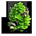 ch_raccoon_robin_01.png
